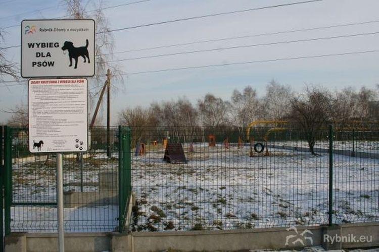 W Rybniku powstał kolejny wybieg dla psów. Gdzie się znajduje?