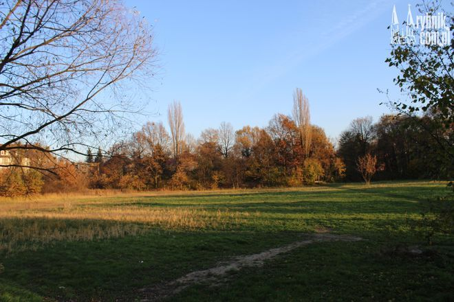 W tym miejscu powstanie Park nad Nacyną. Tuż obok zostanie wybudowany parking