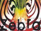 Kulturalny Club: reggae z Zebrą