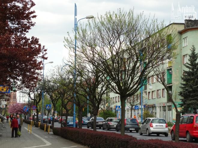 Drzewa rosnące na ul. Kościuszki zostaną ścięte. W ich miejsce staną lipy w donicach