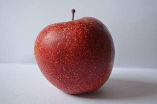 Polskie jabłka nie pojadą już do Rosji, choć cieszyły się tam uznaniem