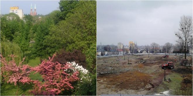Rybnik - miasto zieleni czy betonowa pustynia? Zdania są podzielone