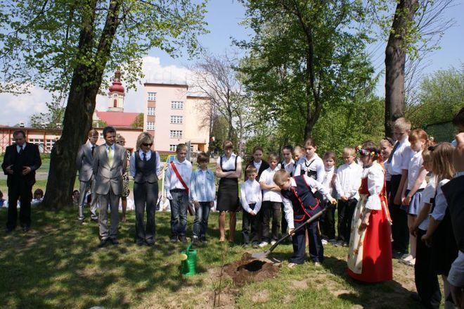 Sadzenie młodych lip w ramach projektu ''Drzewo wolności''