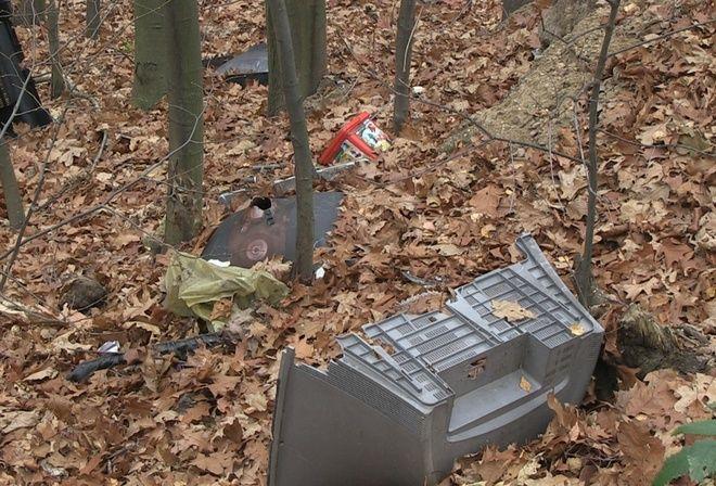 Ustawa śmieciowa działa, ale dzikie wyspiska śmieci w lasach pozostały