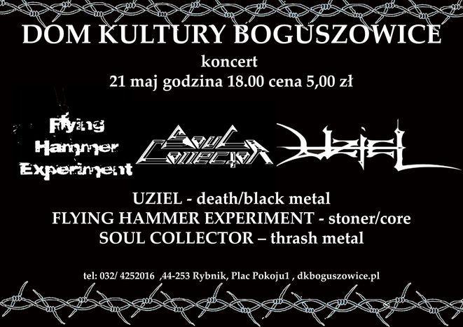 Plakat piątkowego koncertu