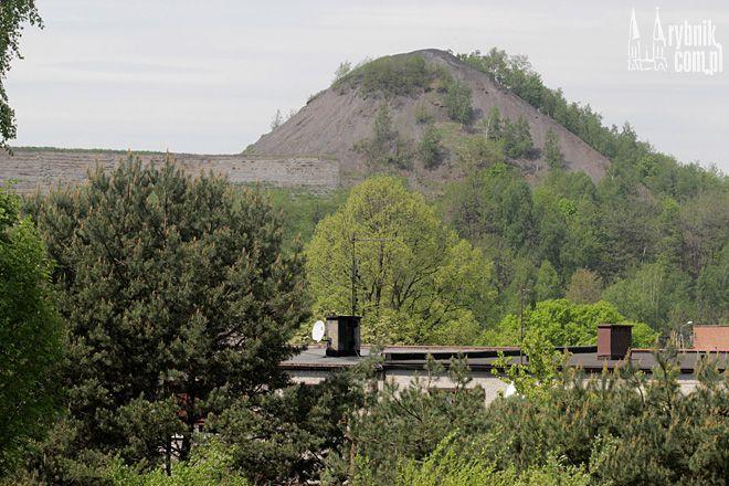 Hałda w Niedobczycach może stać się centrum rekreacyjnym