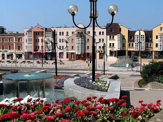 Rybnik nie bez powodu jest uważany za jedno z najzieleńszych miast na Śląsku.