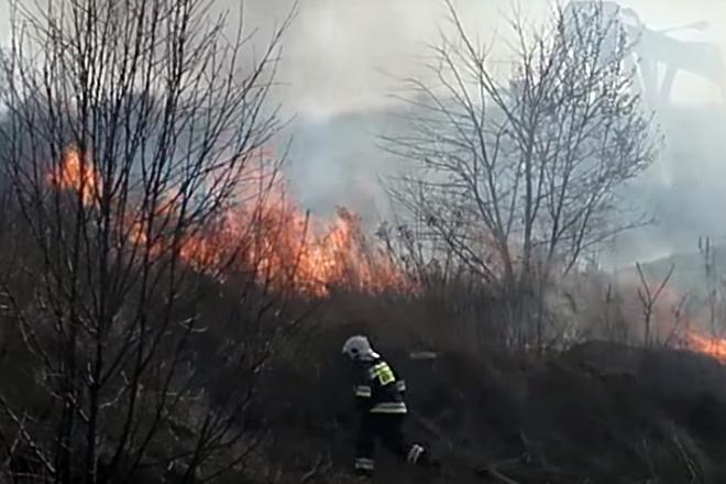 Jeden z internautów zarejestrował wczorajszy pożar trawy w Boguszowicach