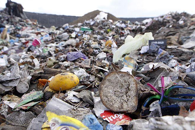 W Czerwionce największym problemem był brak pojemników na odpady przy domach wielorodzinnych